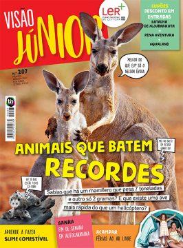 VISÃO Júnior Edição 207