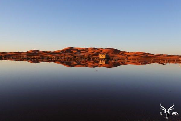 Algumas dunas do Erg Chebbi chegam a medir 150 metros.JPG