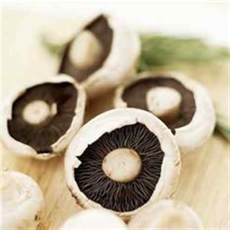 TORRICADO de cogumelos salteados com parmesão