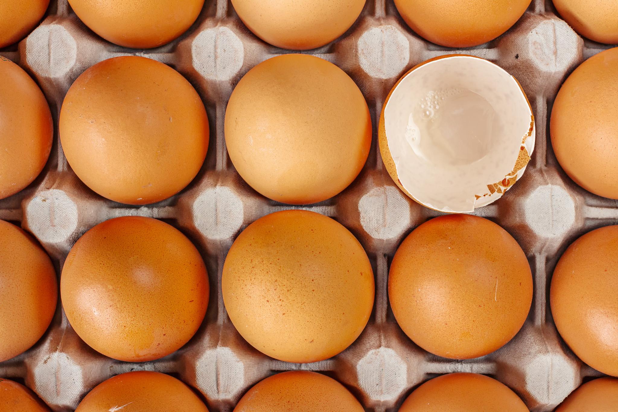 ovos egg eggs ovo eggshell.jpg