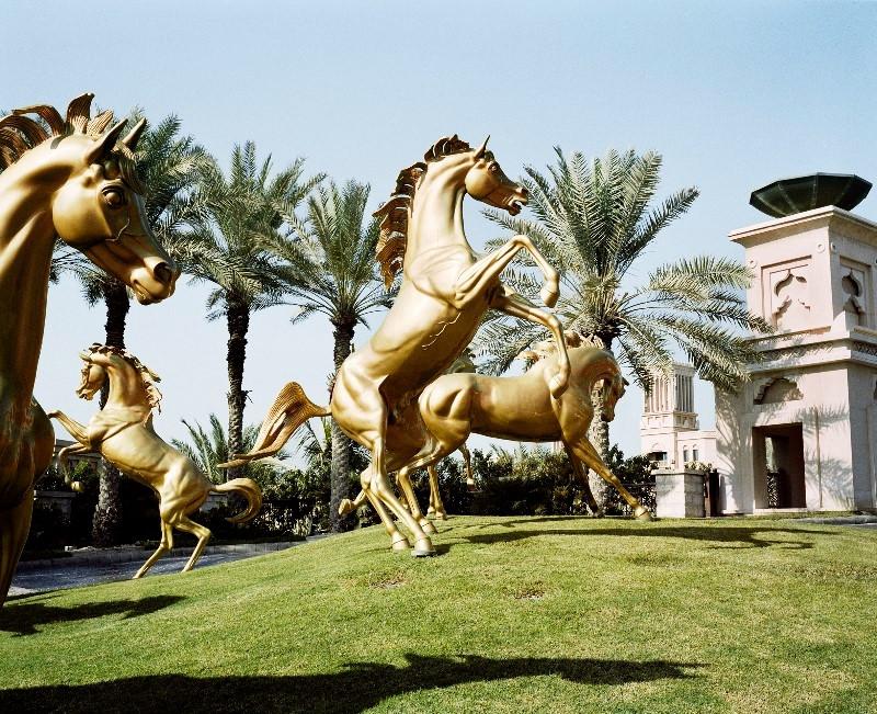Pauliana - cavalos.jpg