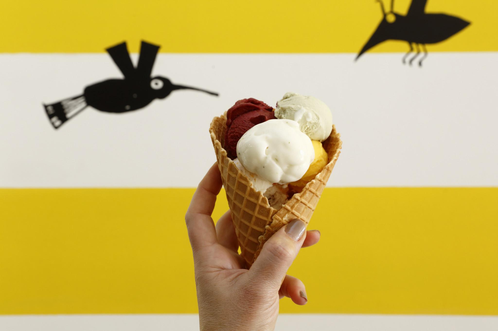 mj gelataria giallo-20-03-2023-mj.jpg