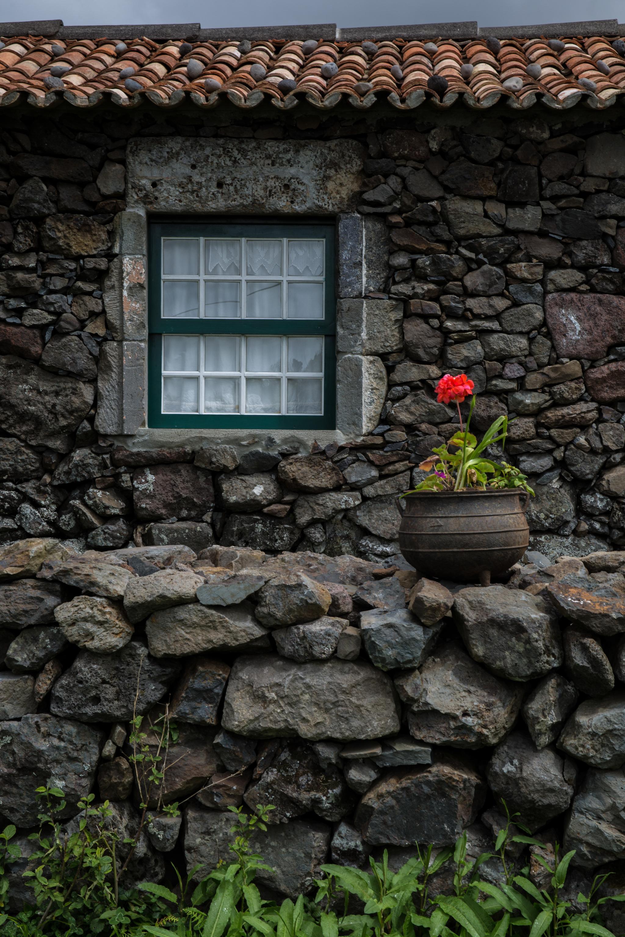 LB aldeia da cuada Acores Ilha Flores 20-04-17 9234.jpg