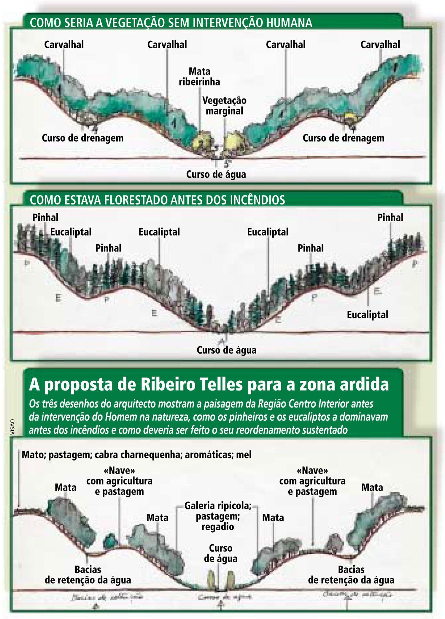 InfoTelles.jpg