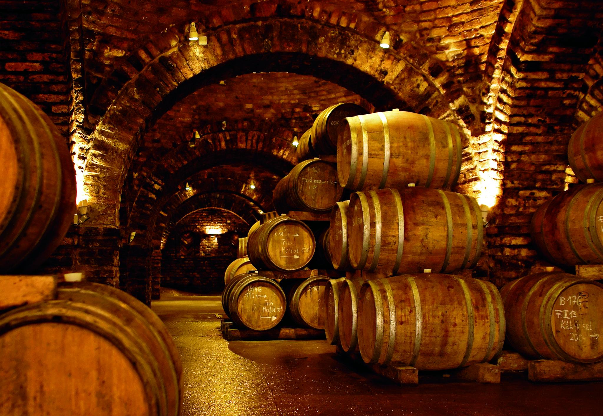 65 bons vinhos para beber em 2018