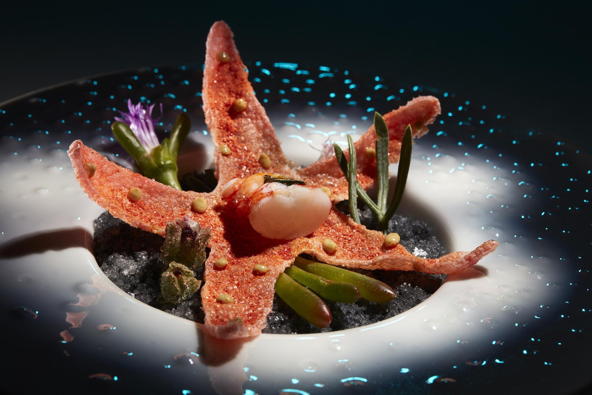 Algarve à luz das Estrelas Michelin