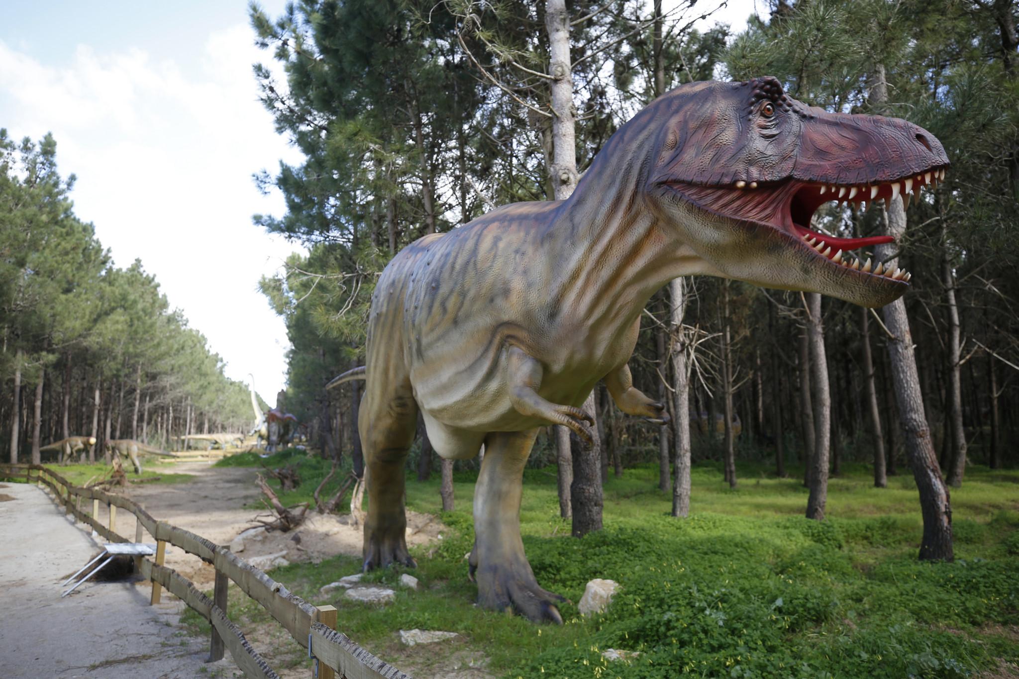 JCC Dino Parque Lourinha 45.JPG