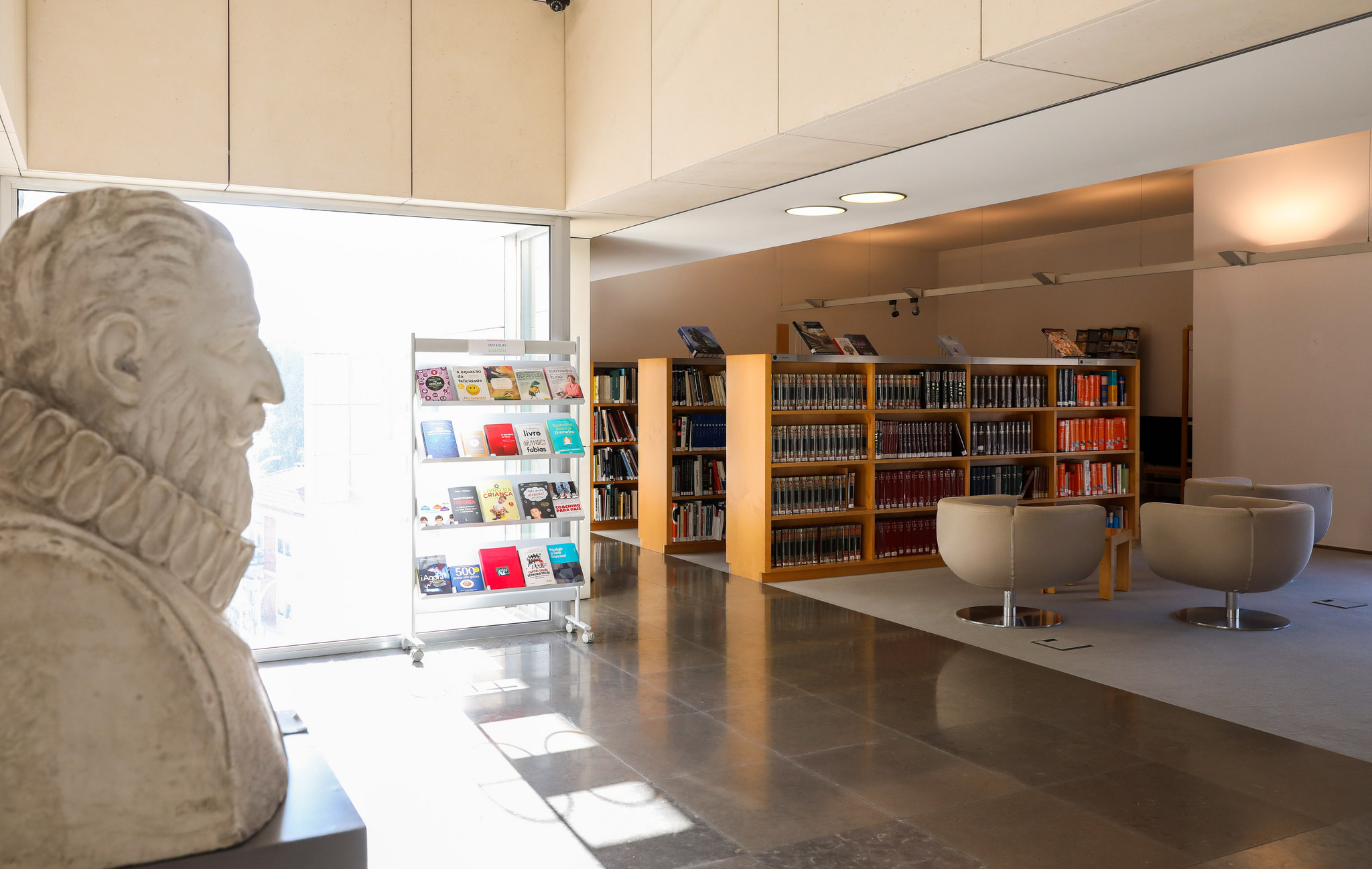 LM-Biblioteca Florbela Espanca 03-01-19-14.jpg