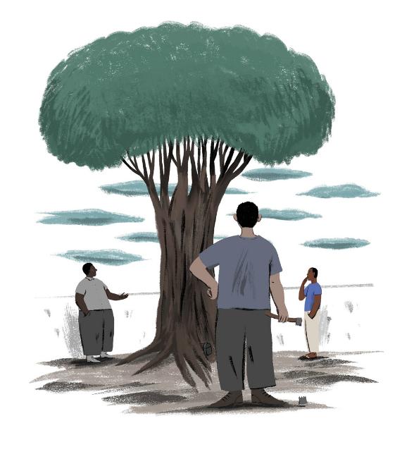 A árvore que engoliu o tempo