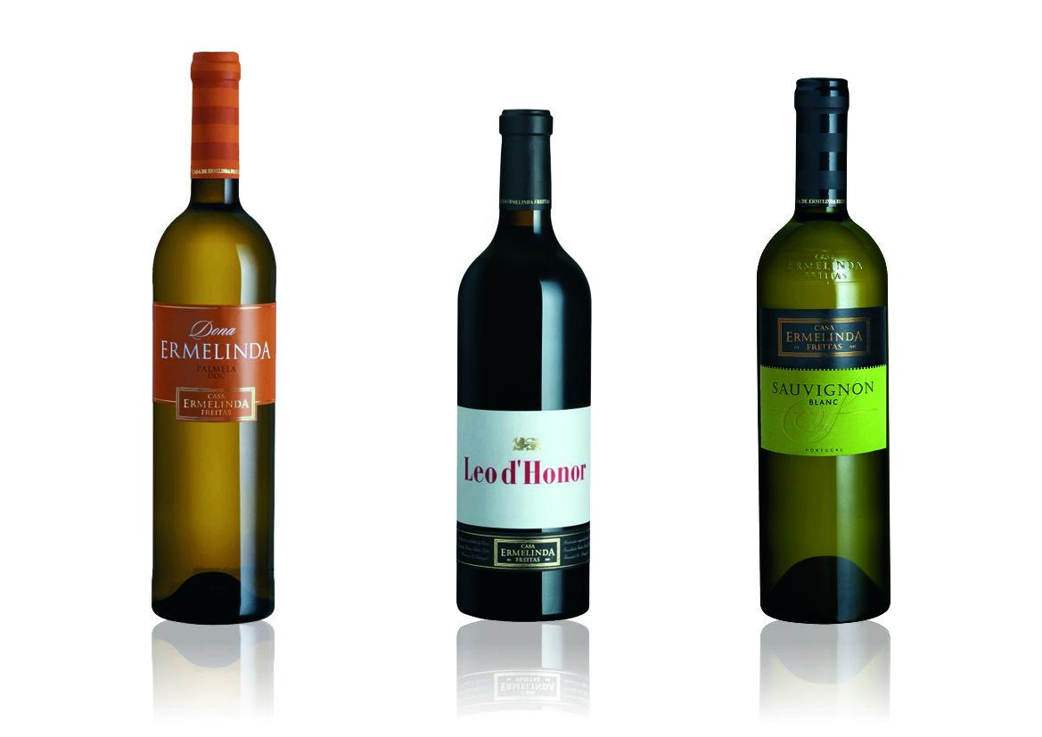 vinhos 1217.jpg