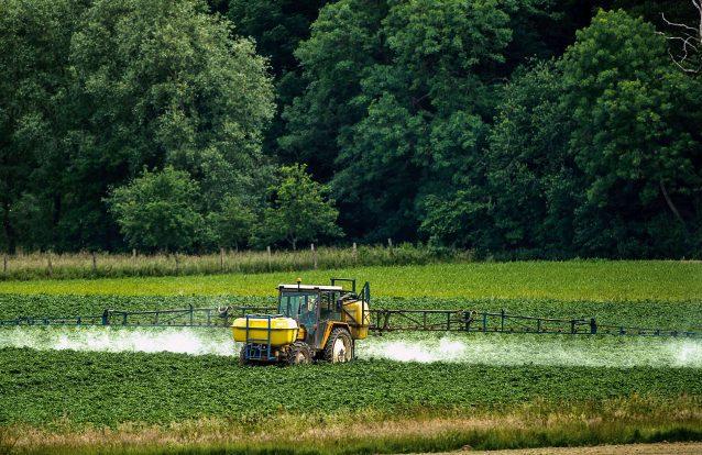 A guerra tóxica do glifosato