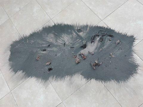 O ar em Paio Pires tem tantas limalhas que se apanham com um íman