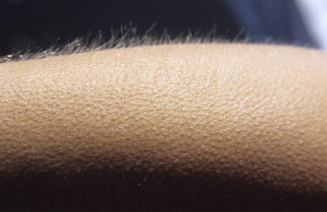 """Porque ficamos arrepiados quando ouvimos """"aquela"""" música?"""