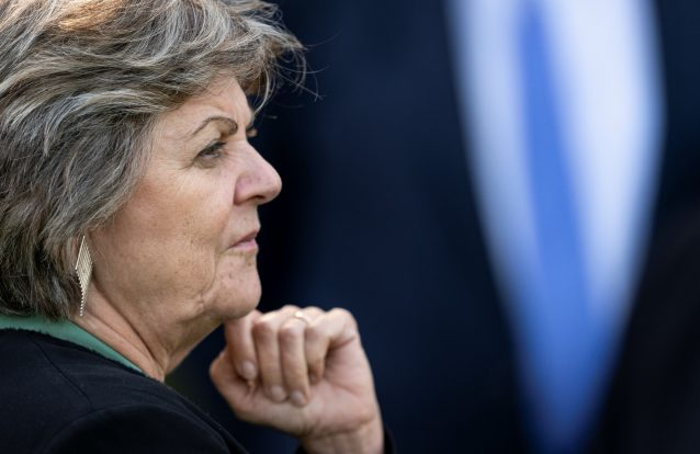 Quais são as preocupações dos eurodeputados com Elisa Ferreira?