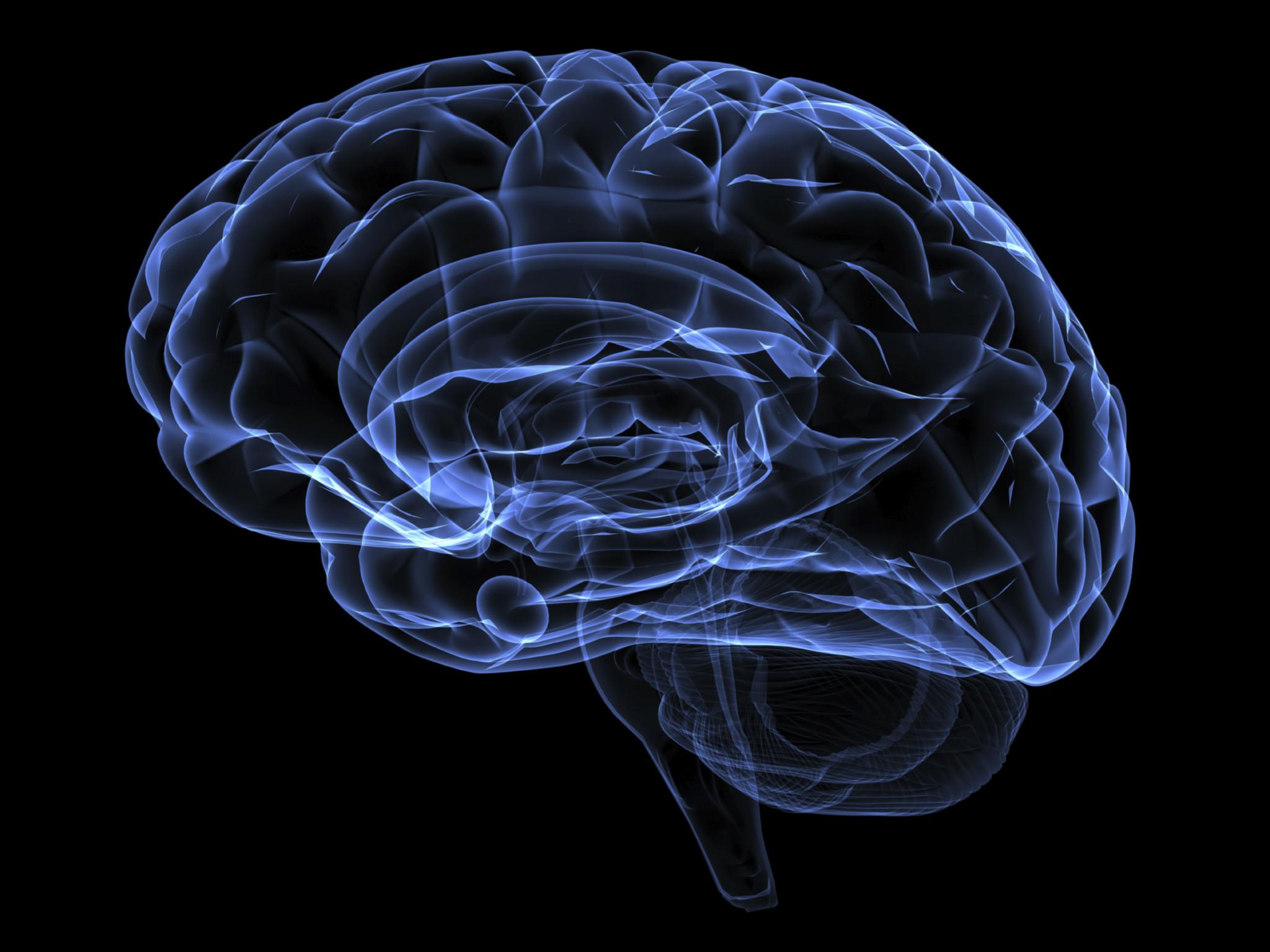Sinais cerebrais traduzidos, pela primeira vez, diretamente em palavras