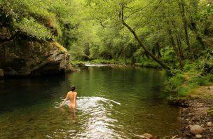 Um guia para explorar o Portugal selvagem