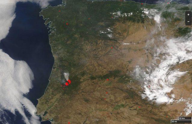 Vai instalar-se no Porto empresa de mapas que trabalha com a NASA e Di Caprio