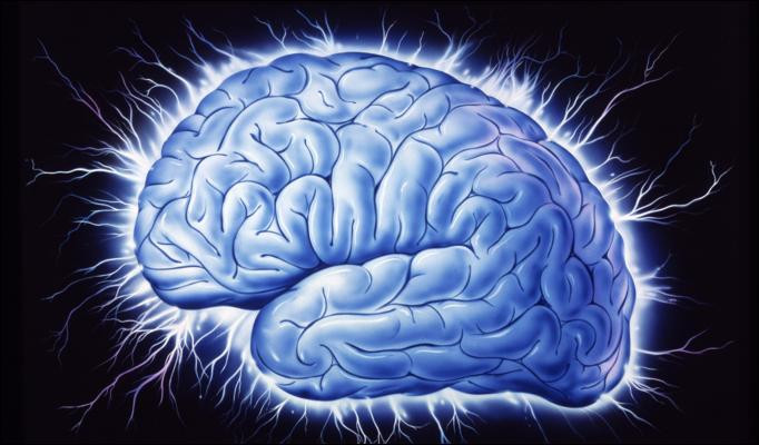Human Brain.jpg