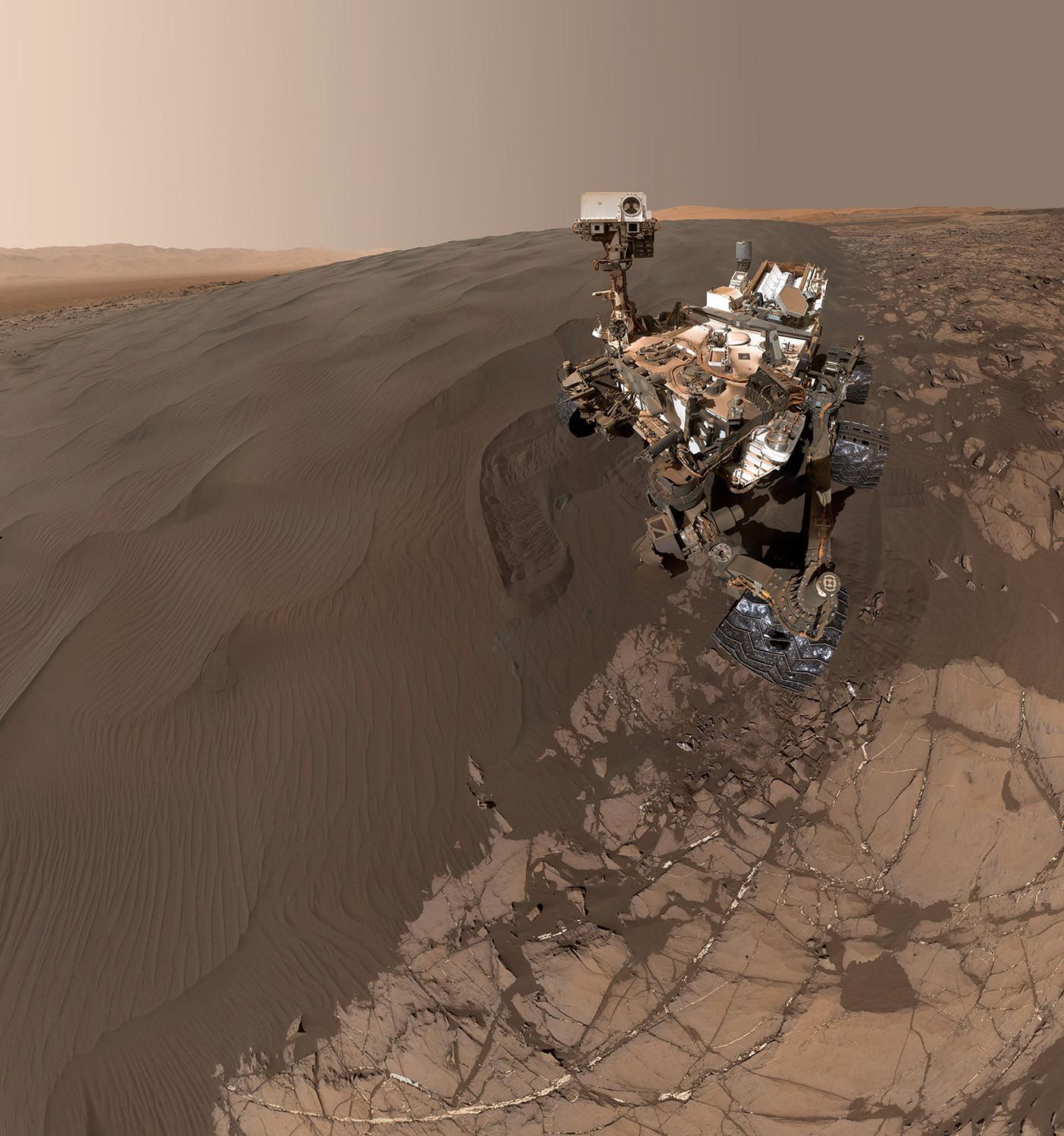 Curiosity Selfie.jpg