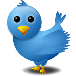 O passarinho mal pode esperar por 2010