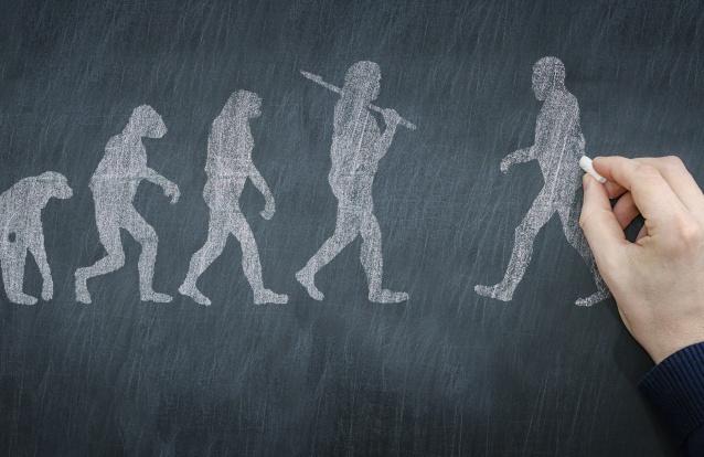 Vestígios de plantas em esqueleto de Neandertal indicam que a espécie era mais sofisticada do que se pensava