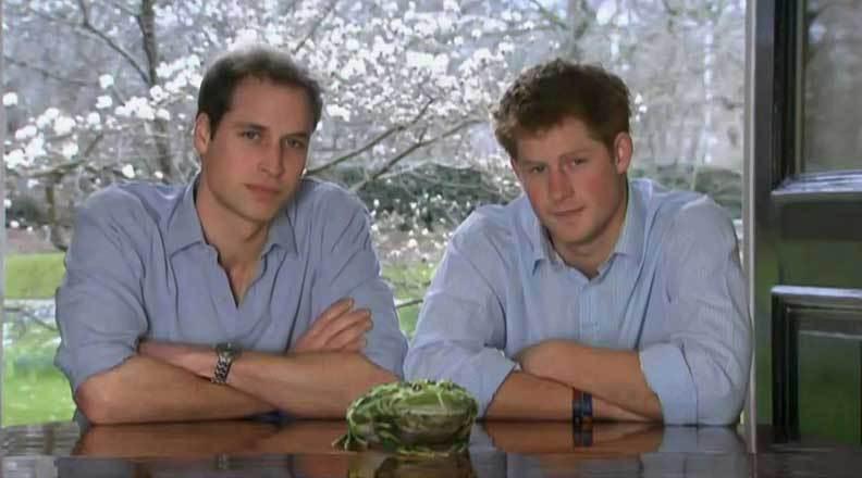 Os príncipes William e Harry